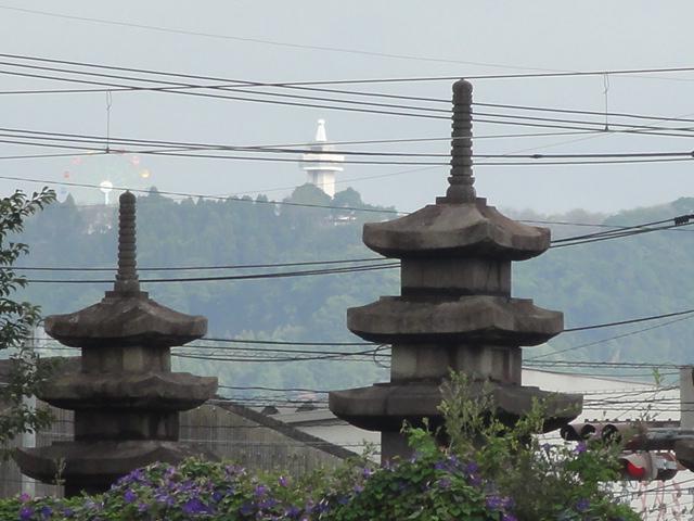 隼人塚と城山.JPG