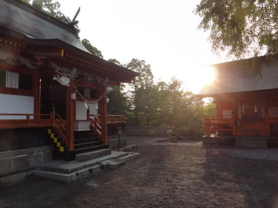 鹿児島神宮 朝陽.JPG