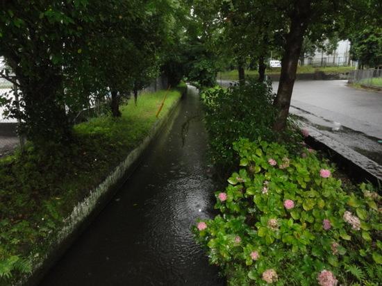 龍馬ハネムーンロード6.26.JPG