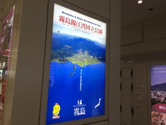 鹿児島中央駅構内電照.JPG