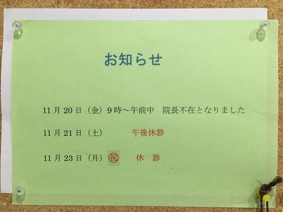 2015.11.18.JPG