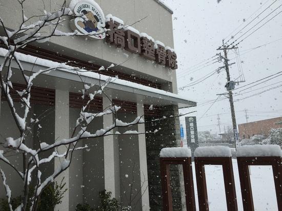 2016.1.24橋口整骨院.JPG