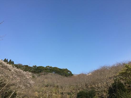 もうすぐ春が.JPG