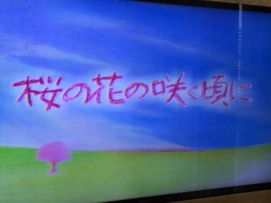 2016.7.14桜の花の咲く頃に.JPG