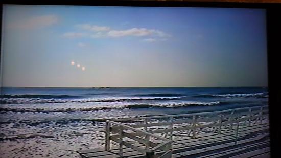 季節はずれの海岸物語 クー.JPG
