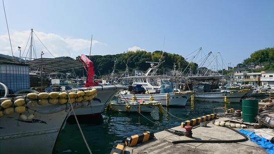 長島町 漁港.JPG