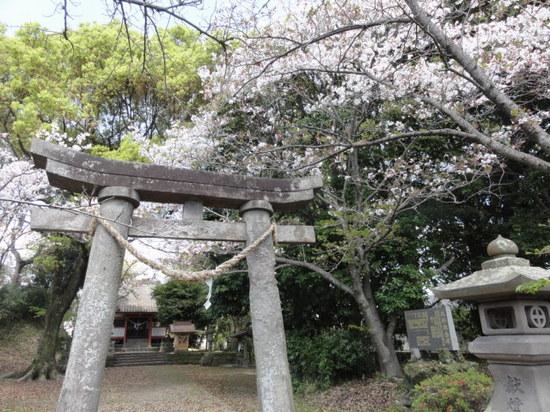 冨隈城2.JPG