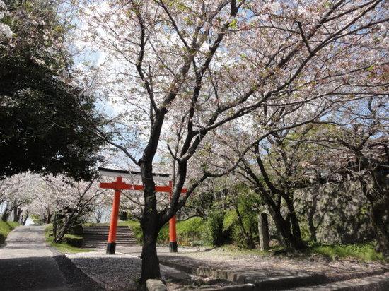 冨隈城3.JPG
