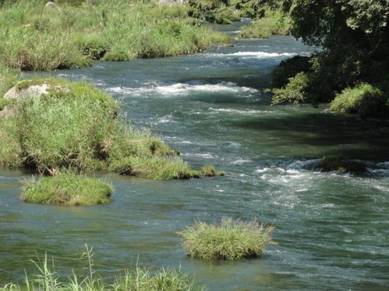天降川 上流.JPG