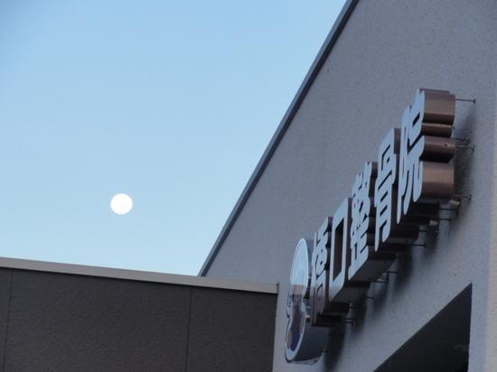 月と橋口整骨院.JPG