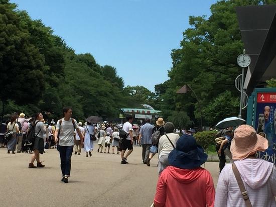 2015.6.28上野動物園.JPG