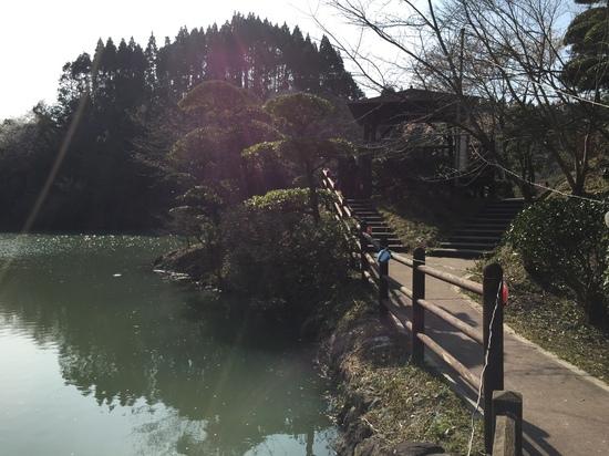 観音が池 2016.3.JPG