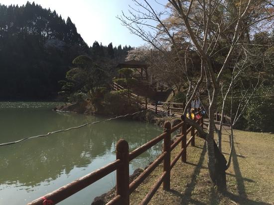 観音が池 2016.JPG
