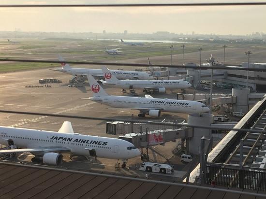羽田空港JAL.JPG